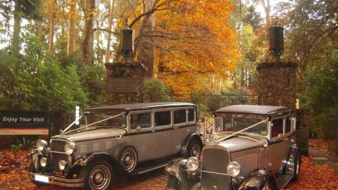 One of recommended supplier's beautiful cars.Do you have an autumn wedding and a…
